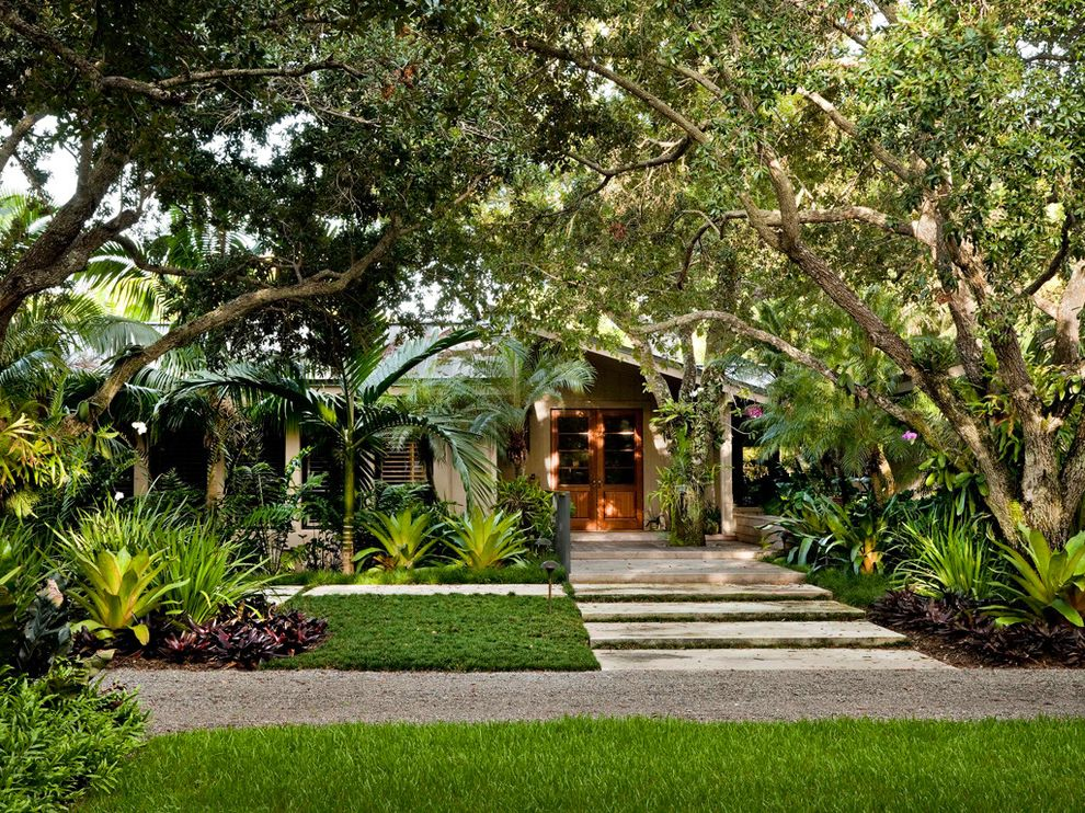 House of Tropicals   Tropical Landscape  and Exotic Plants French Doors Front Steps Front Yard Large Trees Lawn Palm Trees Tropical Landscape Wood Doors