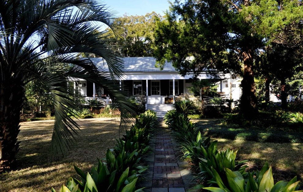 House of Tropicals with Tropical Landscape Also Brick Paving Entrance Entry Grass Lawn Metal Roof Palm Trees Path Plantation Standing Seam Roof Turf Walkway Window Shutters Window Treatments Wrap Around Porch