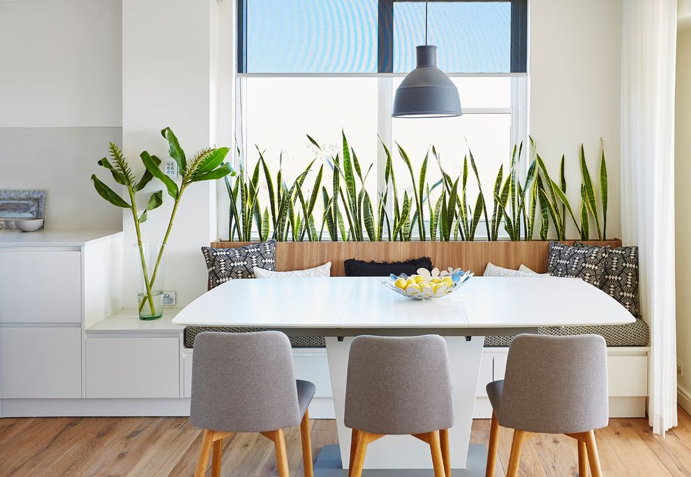 How Long Do Box Springs Last   Contemporary Dining Room  and Built in Planter Contemporary Dining Room Contemporary Furniture Dining Nook Grey Pendant Indoor Plants Modern Pendant White Kitchen