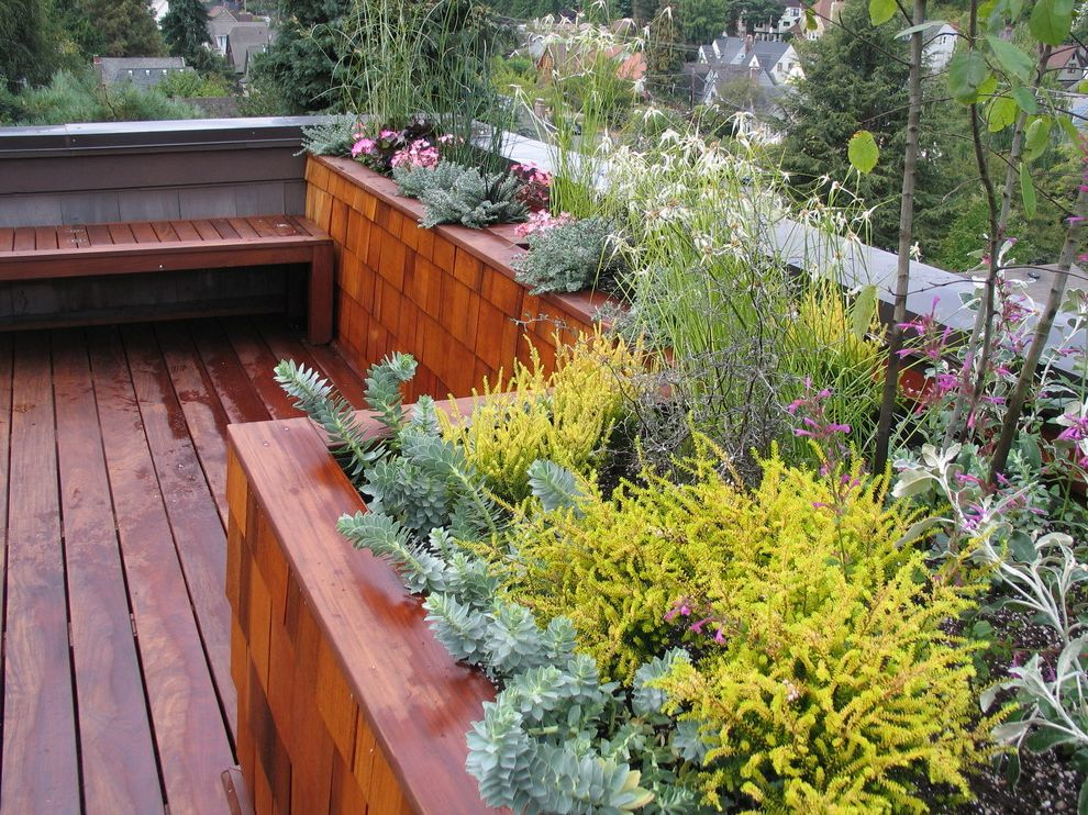 How Long Do Box Springs Last with Contemporary Deck Also Deck Fsc Certified Living Roof Planter Planter Boxes Roof Terrace Shingle Siding View Wood Bench Wood Flooring