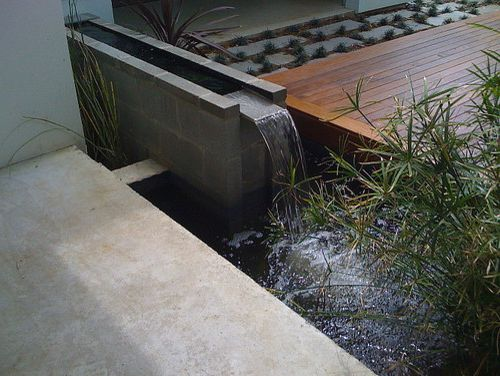 How to Get Rid of Mosquito Hawks   Modern Landscape  and Atlanta Audio Sensory Deck Design Fountain Modern Modern Landscapes Modo Tour Patio Pond Small Outdoor Spaces Water Feature Water Garden Yard Yards