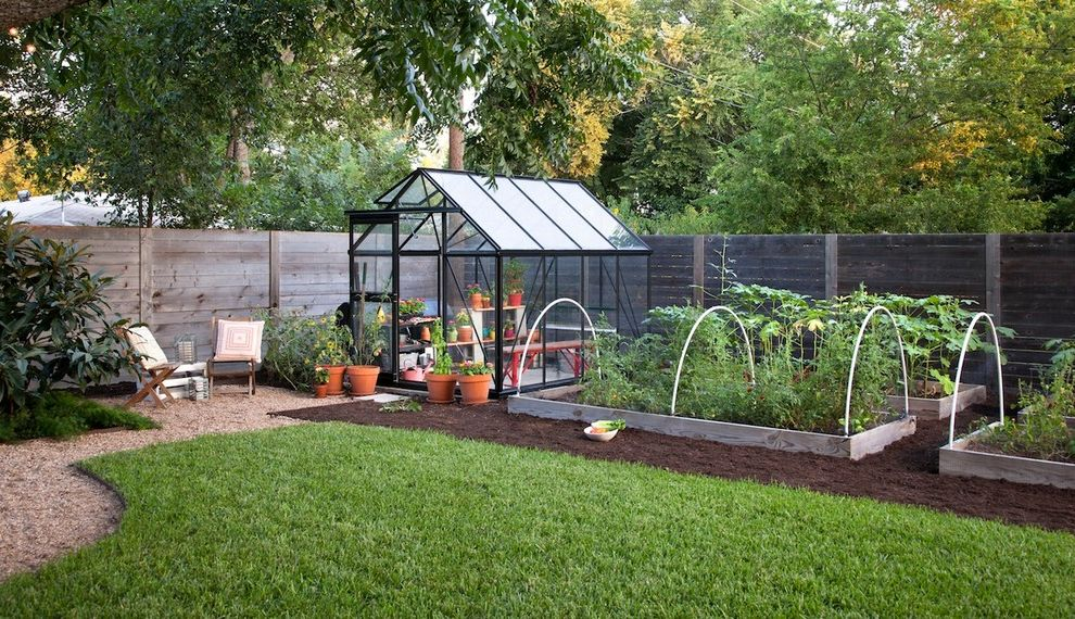 How to Grow Okra with Farmhouse Shed Also Edible Garden Grass Gravel Greenhouse Planter Boxes Plants Potted Plants Raised Beds Trees Wood Fence