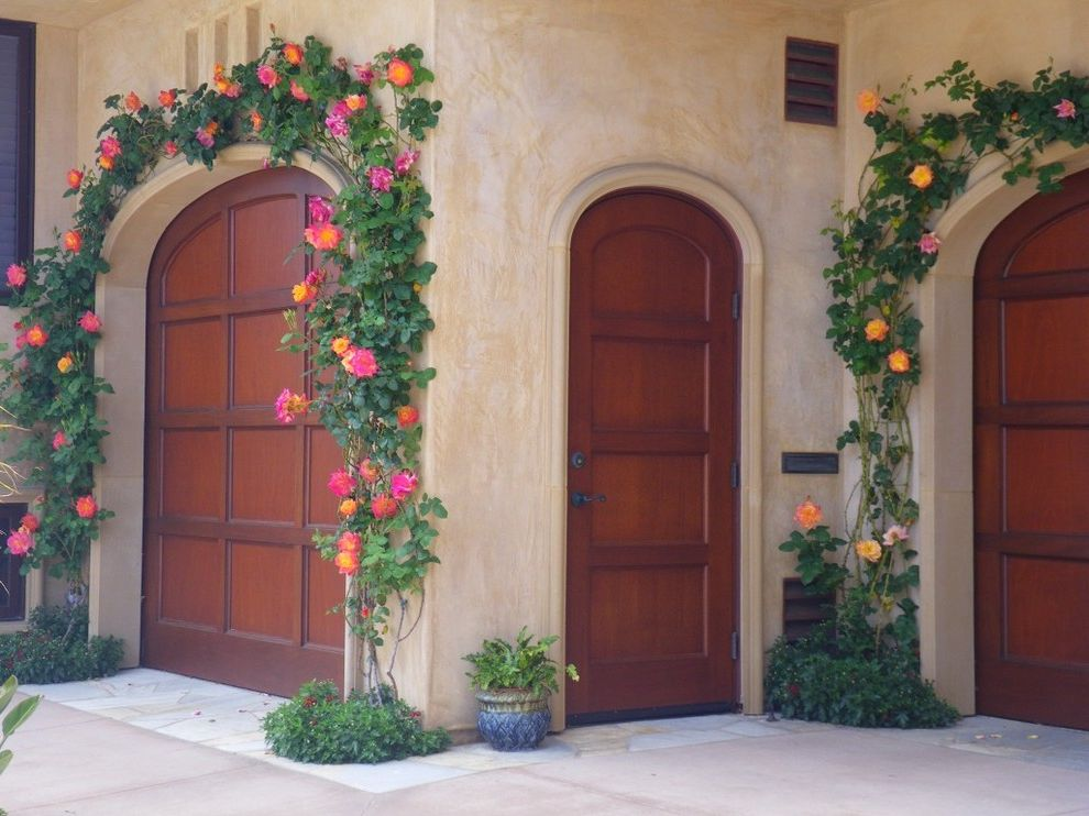 How to Prune Knockout Roses   Mediterranean Garage  and Arched Doorrways Climbing Rose Concrete Dark Stained Wood Flagstone Fragrant Rose Frame and Panel Doors Josephs Coat Showy Flowers Stucco