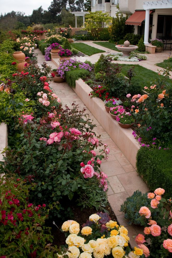 How to Prune Knockout Roses with Traditional Landscape  and Bird Bath California Pepper Tree Color Palette Colorful Garden Cutting Garden Extended View Flower Garden Formal Garden Fountain Path Rose Garden Terrace Water Feature