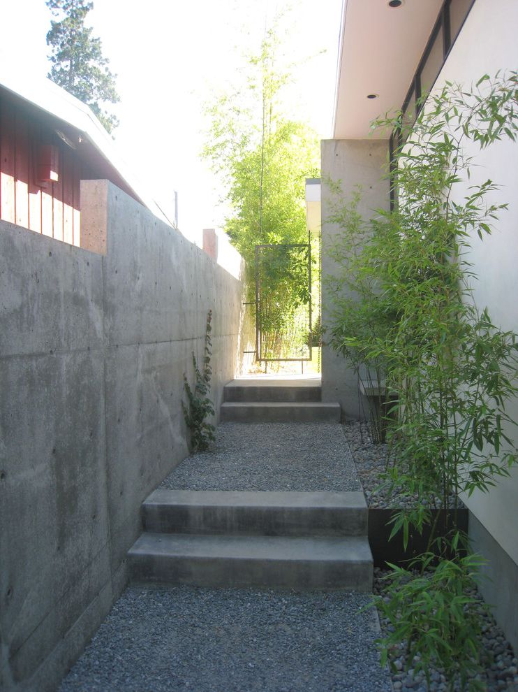 How to Take Care of Bamboo with Modern Landscape  and Asian Bamboo Concrete Steps Concrete Wall Crushed Rock Gate Gravel Step Stucco