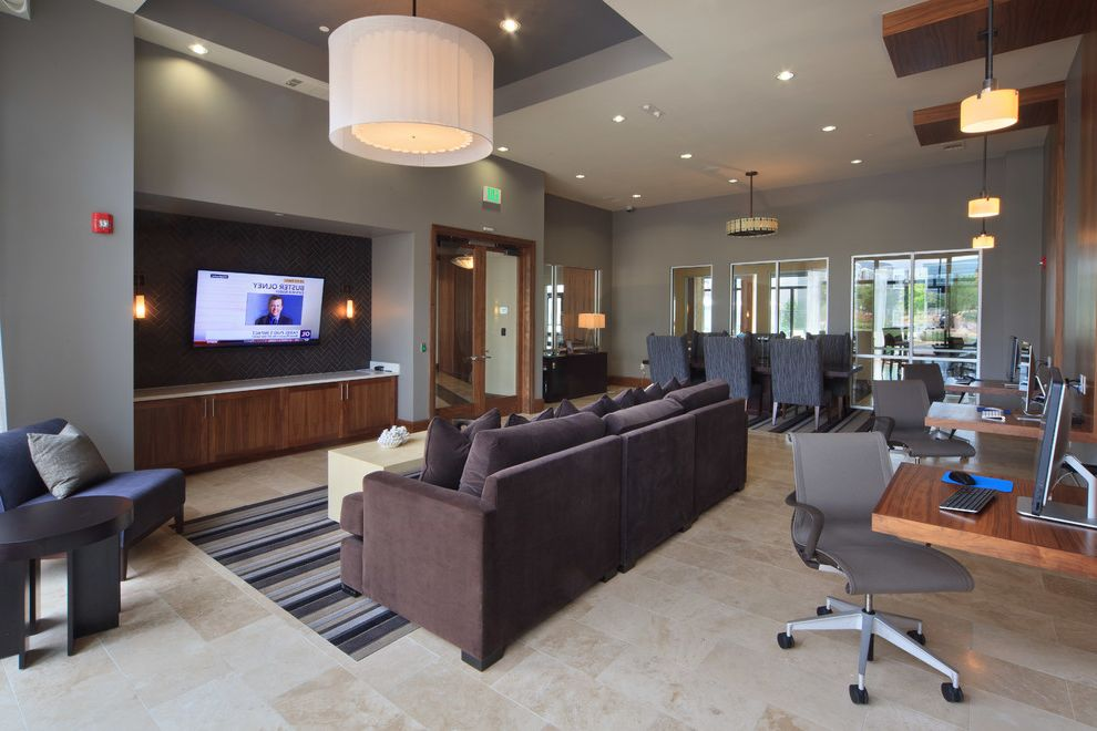 Icon at Dulles   Transitional Living Room  and Transitional