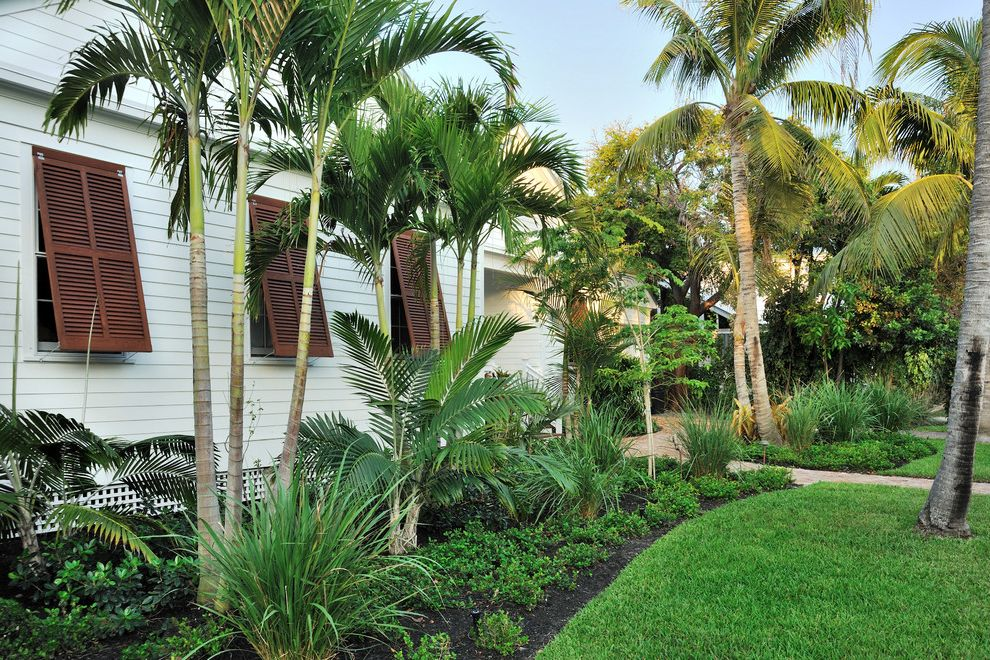 Impact Windows West Palm Beach   Tropical Landscape  and Awning Windows Brown Shutters Flower Bed Grass Horizontal Siding Louvered Windows Louvers Palm Trees Paradise White House White Walls