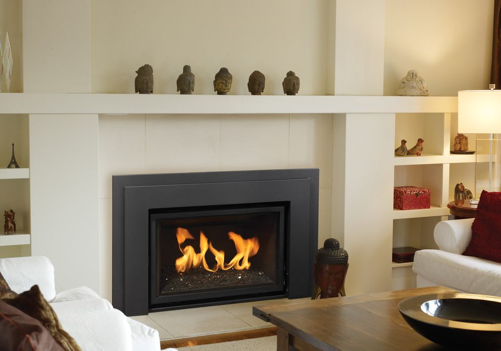 Installing Gas Fireplace Insert   Contemporary Family Room  and Fireplace Insert Gas Fireplace Insert Gas Insert Modern Fireplace Insert