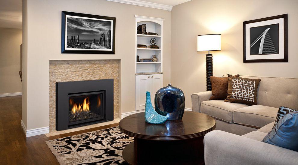 Installing Gas Fireplace Insert   Contemporary Living Room Also Fireplace Insert Gas Fireplace Ins Gas Fireplace Insert Modern Fireplace Modern Fireplace Insert