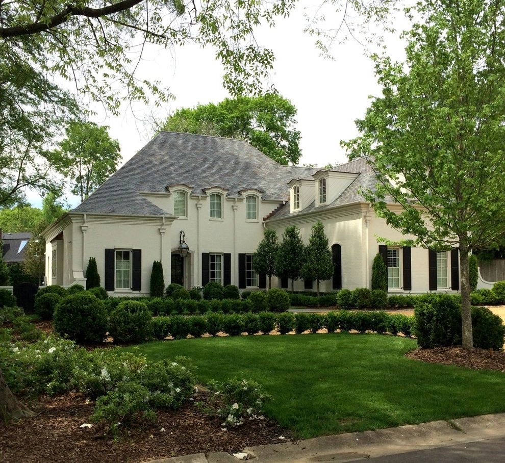 Japanese Blueberry Tree   Traditional Exterior  and Curb Appeal French Country Hedges Inset Dormers Mediterranean Tall Windows