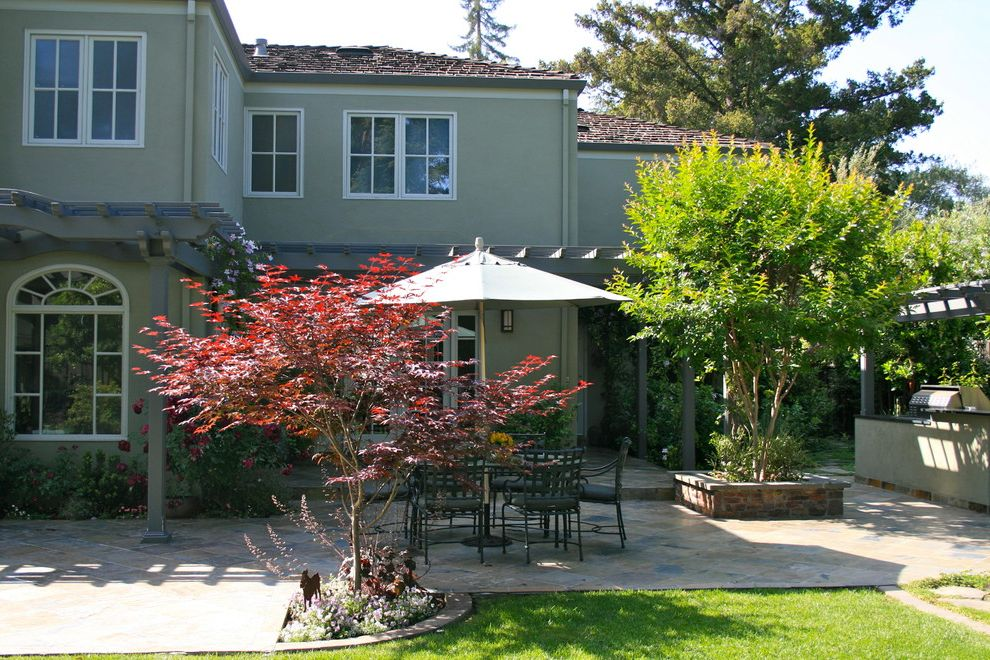 Japanese Blueberry Tree with Traditional Patio Also Backyard Crepe Myrtle Grass Green House Japanese Maple Lawn Outdoor Dining Patio Furniture Patio Umbrella Pergola Planters Seasonal Color Shade Tree Stone Paving Turf
