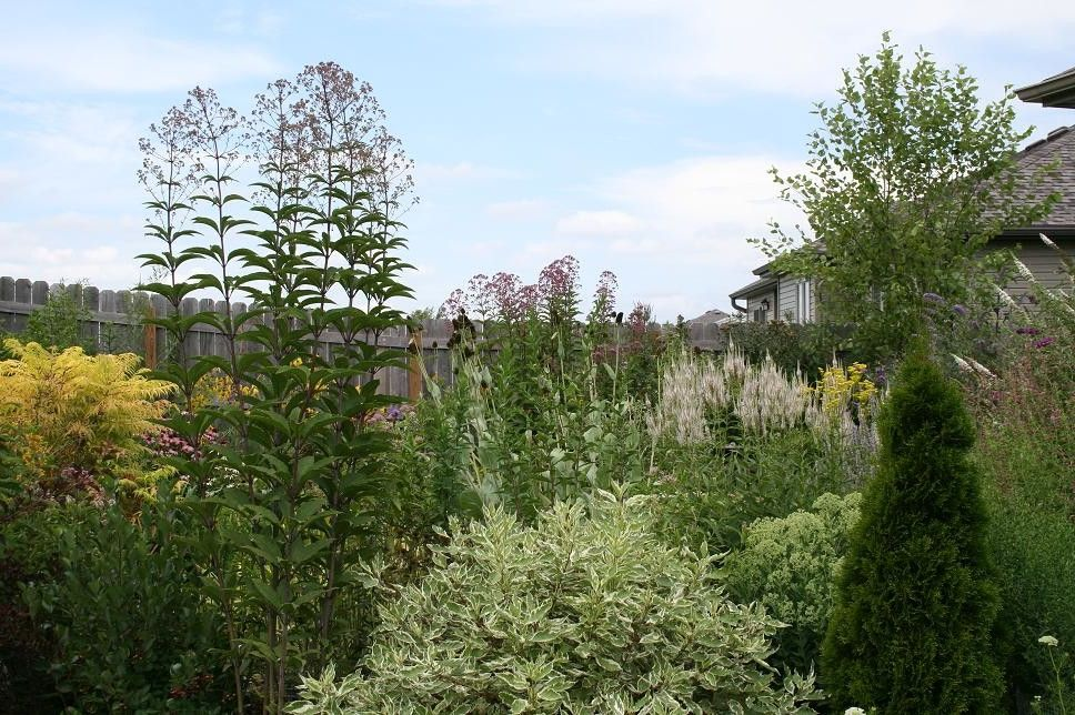 Johnsons Nursery with Contemporary Landscape Also Contemporary