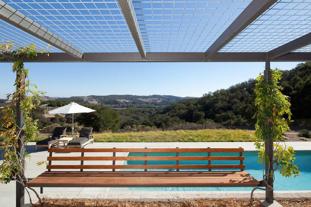 King Canopy Replacement Covers   Farmhouse Patio Also Backyard Bench Climbing Plants Country Farm Farm House Green House Lap Pool Lounge Chairs Metal Metal Trellis Modern Open Outdoor Seating Overhang Pool Rectilinear Pool Rolling Hills Trellis