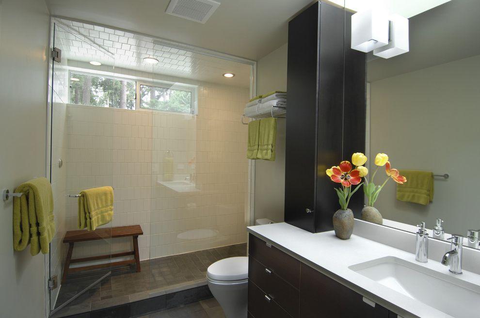 Kohler K 2215   Modern Bathroom  and Bench Cabinetry Ceramic Tile Glass Ikea Kohler Sink Modern Seattle Skylight Steam Shower Warm
