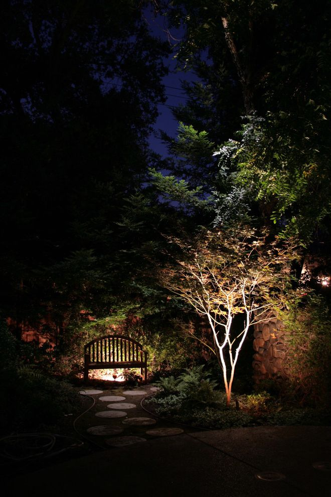 Landscape Supply Greenville Sc   Asian Landscape  and Downlighting Landscape Lighting Moonlighting Pathway Uplighting