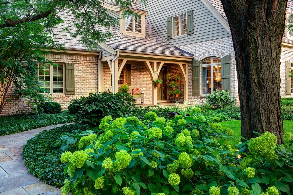 Landscapers Near Me   Traditional Landscape  and Arrival Bluestone Brick Facade Curvalinear Curve Door Entrance Entry Foyer Front Garden Hursthouse Hydrangeas Planting Porch Secondary Service Side Walk Window Shutters Yard