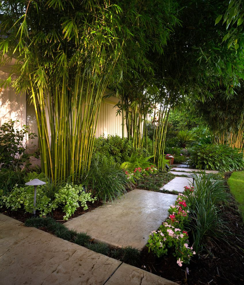 Landscaping Cary Nc   Tropical Landscape  and Bamboo Bushes Grass Lawn Path Lighting Pathway Pink Flowers Red Flowers Shrubs Stone Paver Pathway Stone Paver Walkway Stone Pavers
