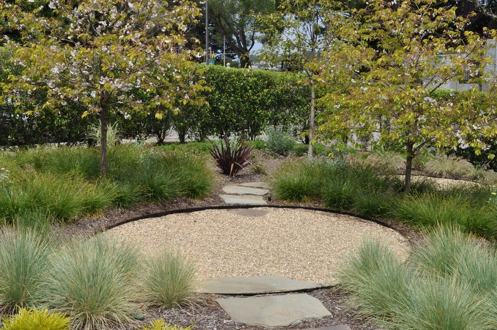 Landscaping Cary Nc with Contemporary Landscape  and Flax Grasses Gravel Hedge Mulch Path Pavers Permeable Paving Privacy Screen Steps Walkway