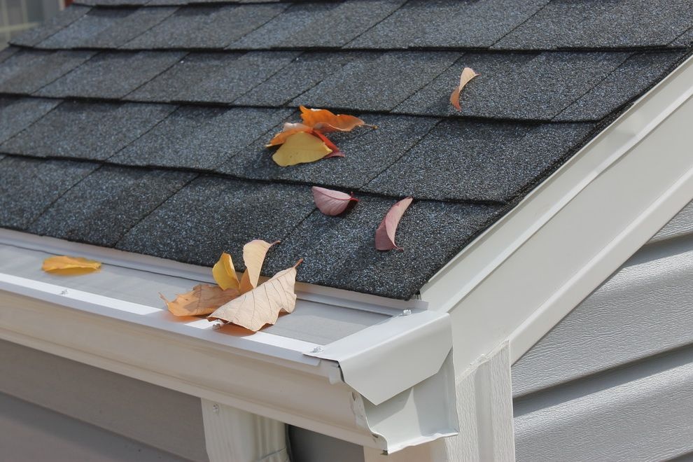 Leaf Filter Reviews   Traditional Exterior Also Gutter Covers Gutter Guards Gutter Protection Leaf Filter Leaf Guards Leaf Gutter Guards Leaffilter Rain Gutter Guards Rain Gutters
