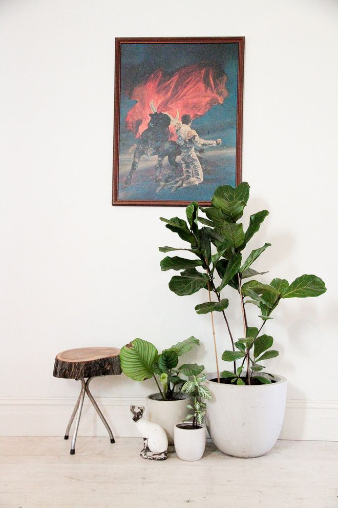Leaf Filter Reviews with Eclectic Hall Also Eclectic
