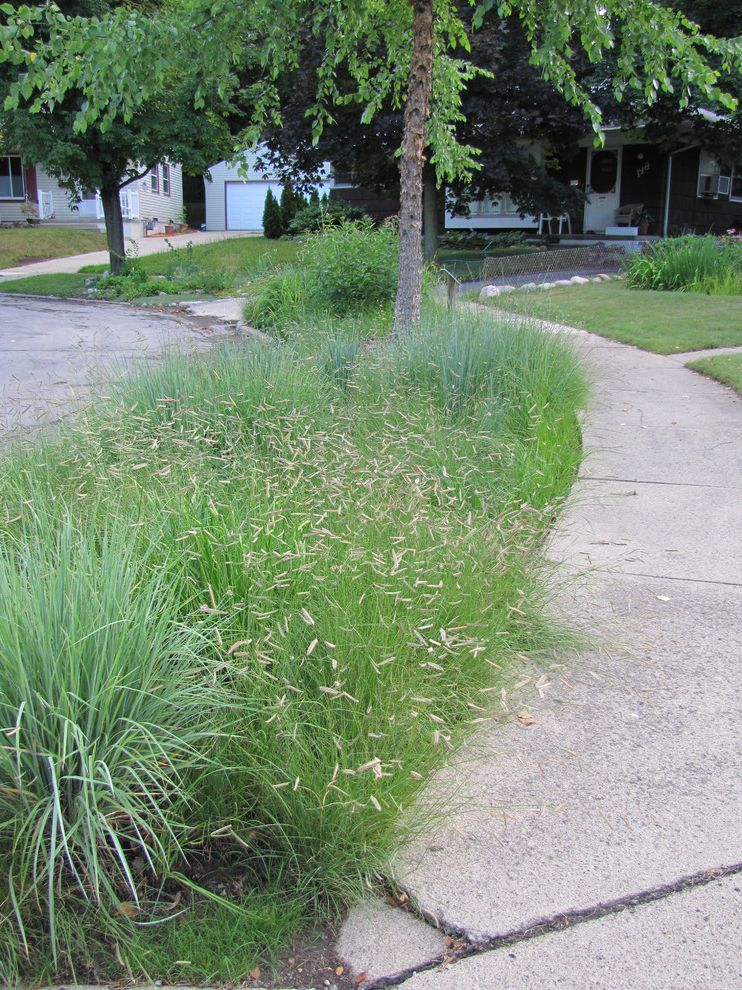 Llc in Washington State with Contemporary Landscape  and Native Plants Prairie Grasses