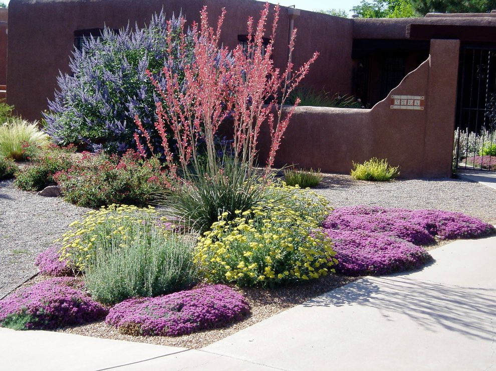 Lowes Amarillo with Southwestern Landscape Also Albuquerque Xeric Color Xeriscape
