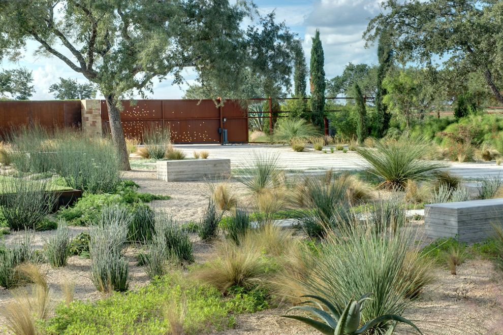 Lowes Chandler Az   Southwestern Landscape  and Arid Concrete Paving Concrete Wall Cor Ten Desert Modern Driveway Entrance Entry Entry Gate Grasses Ground Cover Low Water Metal Minimal Rust Sculptural Plants Succulents