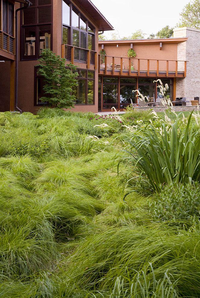 Lowes Enterprise Al   Contemporary Landscape  and Backyard Balcony Balustrade Grass Handrail Lawn Overgrown Planting Railing Sliding Door Turf