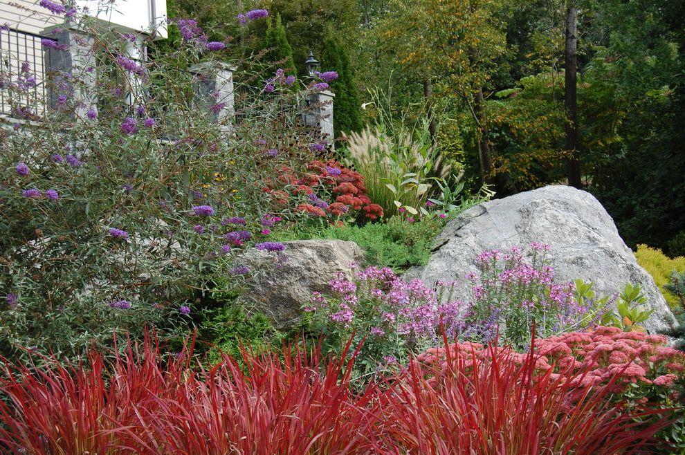 Lowes Greensboro Nc   Eclectic Landscape Also Boulders Juniper Mass Planting Naturalistic Plant Combinations Read Grass Rocks Sedums
