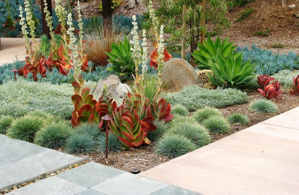 Lowes Hixson Tn with Contemporary Landscape  and Agave Beach Pebbles Boulder Boulders Colored Concrete Copper Light Garden Lighting Grasses Ground Cover Kalanchoe Low Water Mass Plantings Rocks Slate Pavers Succulents