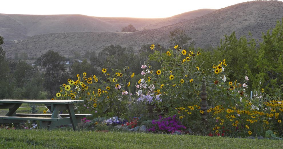 Lowes Medford Oregon   Farmhouse Landscape Also Grass Hills Lawn Mass Planting Meadow Naturalistic Picnic Table Turf View Wildflowers