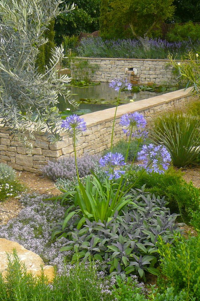 Lowes Niles Ohio with Mediterranean Landscape Also Agapanthus Drystone Lilies Lily Pads Mediterranean Natural Landscape Olive Trees Pond Purple Flowers Stone Wall Water Feature Water Fountain Waterfall