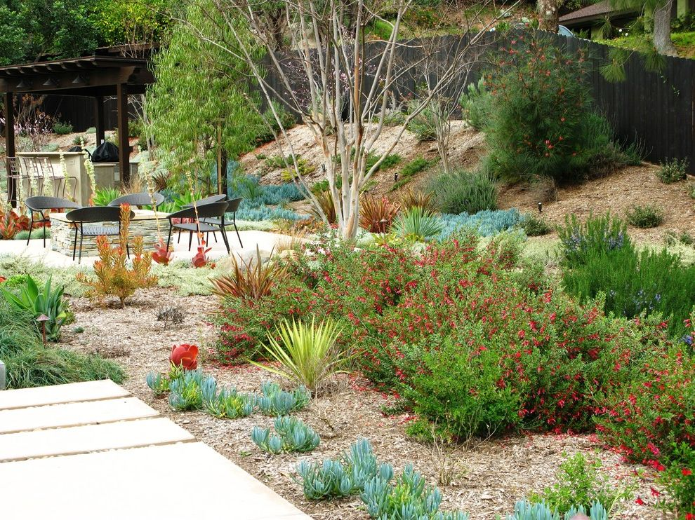 Lowes Pacoima with Contemporary Landscape Also Garden Lighting Hillside Ice Plant Low Water Mulch Outdoor Fire Pit Patio Patio Furniture Slope Succulents