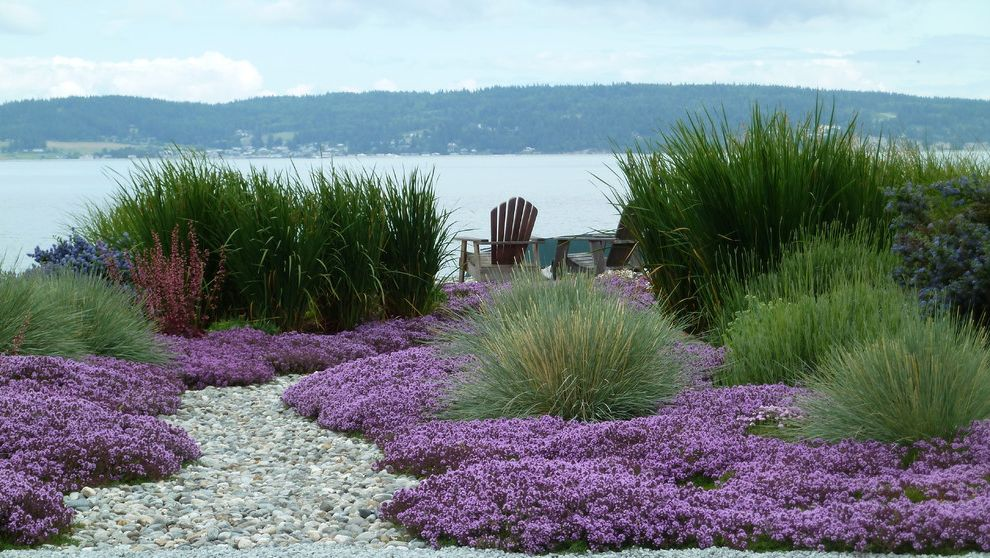 Lowes Sacramento   Beach Style Landscape  and Adirondack Chairs Coastal Dry Creek Dry River Bed Grasses Gravel Ground Cover Mass Planting Patio Furniture Purple Flowers Seaside Landscape Waterfront