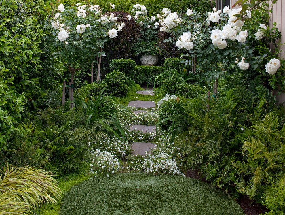 Lowes San Jose   Shabby Chic Style Landscape Also Artificial Turf Path Pavers Planting Between Pavers Roses Side Yard Steps Stone Paving White Flowers