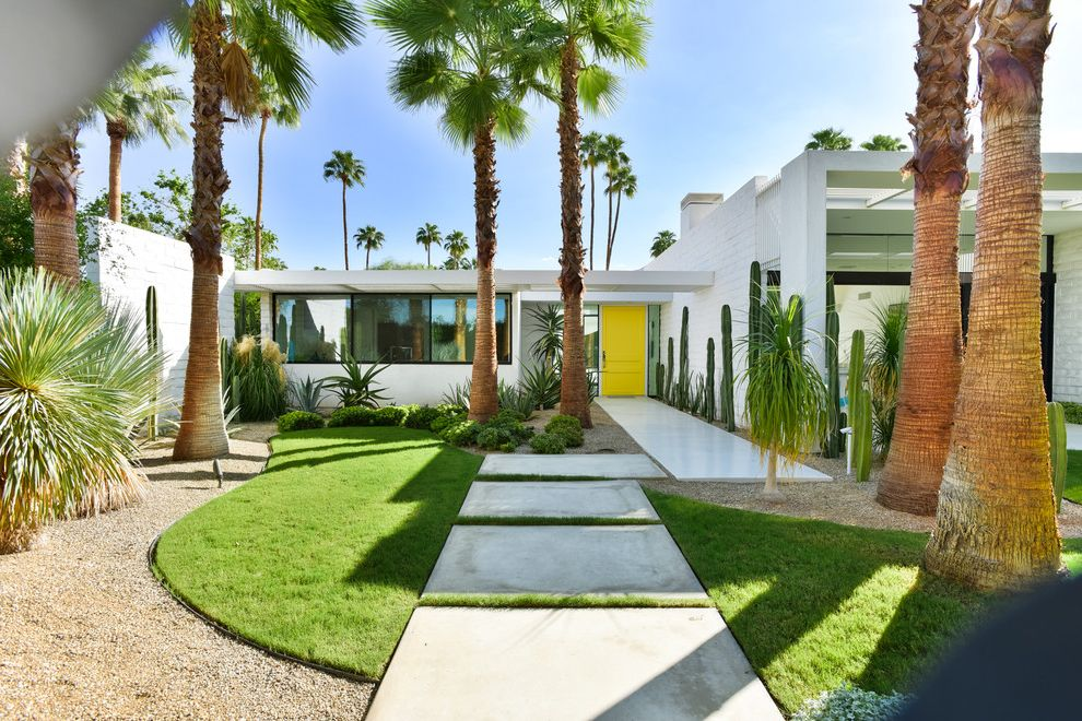 Lowes Springdale Ar   Midcentury Exterior  and Concrete Pavers Mid Century Modern Krisel Remodel in Palm Springs Palm Trees