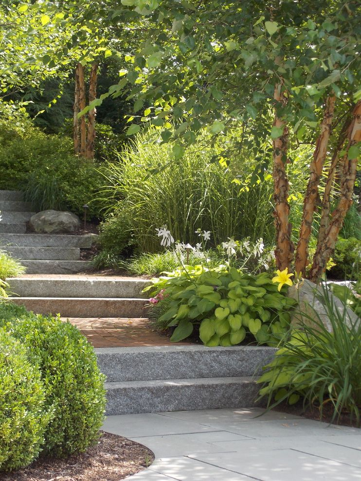 Lynch Landscaping   Traditional Landscape  and Bluestone Bluestone Patio Boulders Boxwood Hedge Brick Walkway Granite Steps Landscape Steps Shade Garden Walkway Walkway Steps