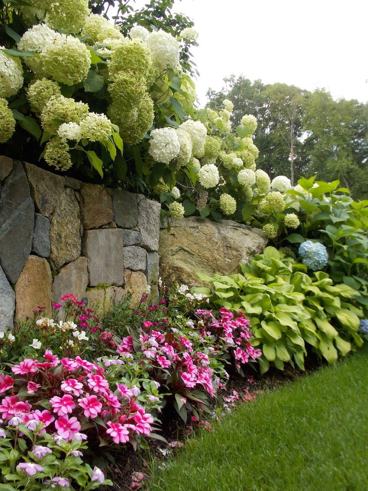 Lynch Landscaping with Traditional Landscape  and Annual Color Boulders Colorful Plantings Fieldstone Fieldstone Wall Hydrangeas Natural Natural Stone Wall