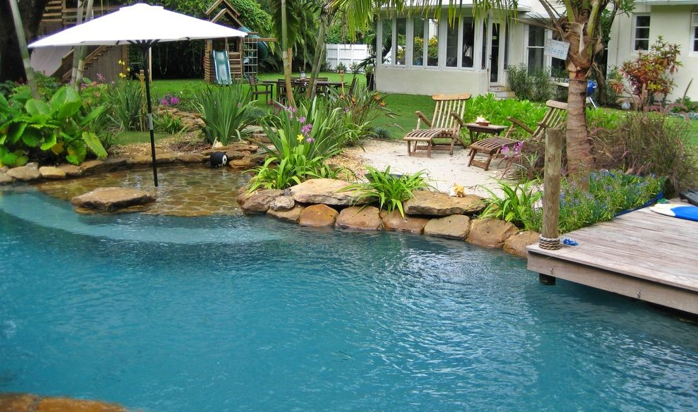 Market Umbrella Clearance with Tropical Pool Also Backyard Beach Area Dock Grass Lawn Palm Trees Patio Umbrella Poolside Plantings Rocks Sand Sun Shelf Tropical Plants Turf