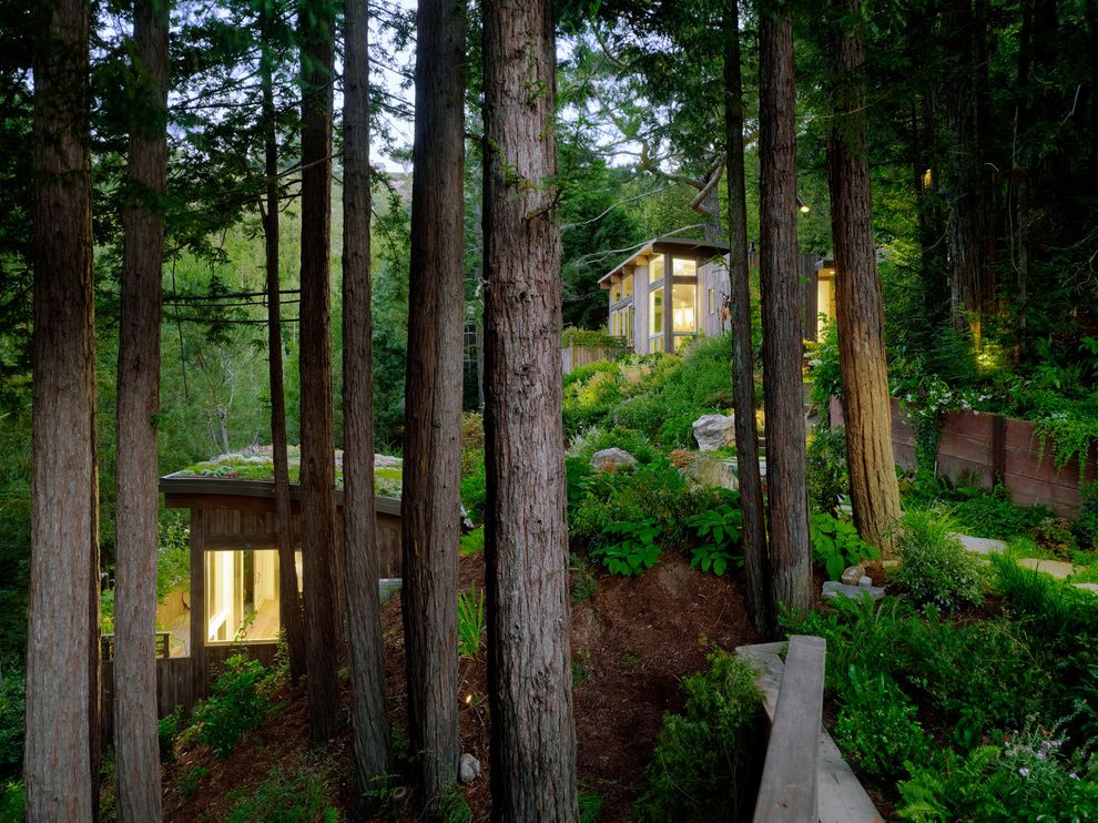 Mill Valley Houses for Sale   Contemporary Shed  and Cabin Flagstone Path Forest Hillside Rooftop Garden Vertical Wood Siding Weathered Wood