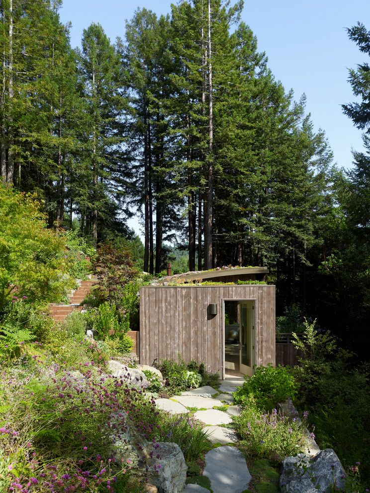 Mill Valley Spa   Contemporary Shed Also Cabin Flagstones Forest Hillside Rooftop Garden Steps Vertical Wood Siding
