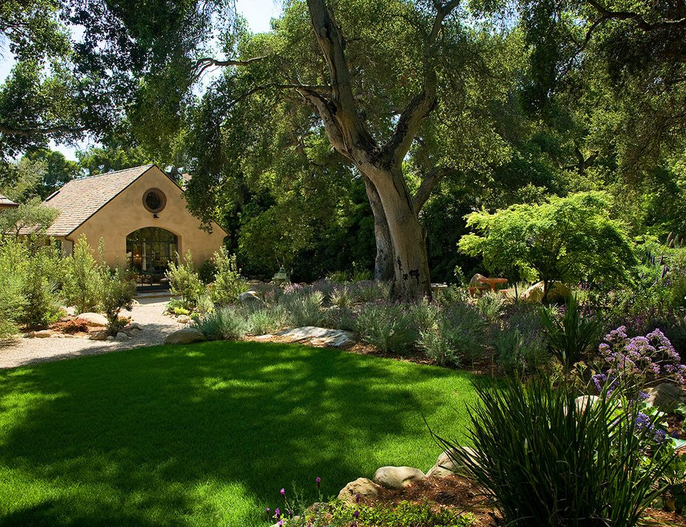 Mosquito Spray for Yards   Mediterranean Landscape Also Border Planting Boulders Garden Grass Lawn Mass Plantings Meandering Oak Tree Path Rocks Turf Walkway