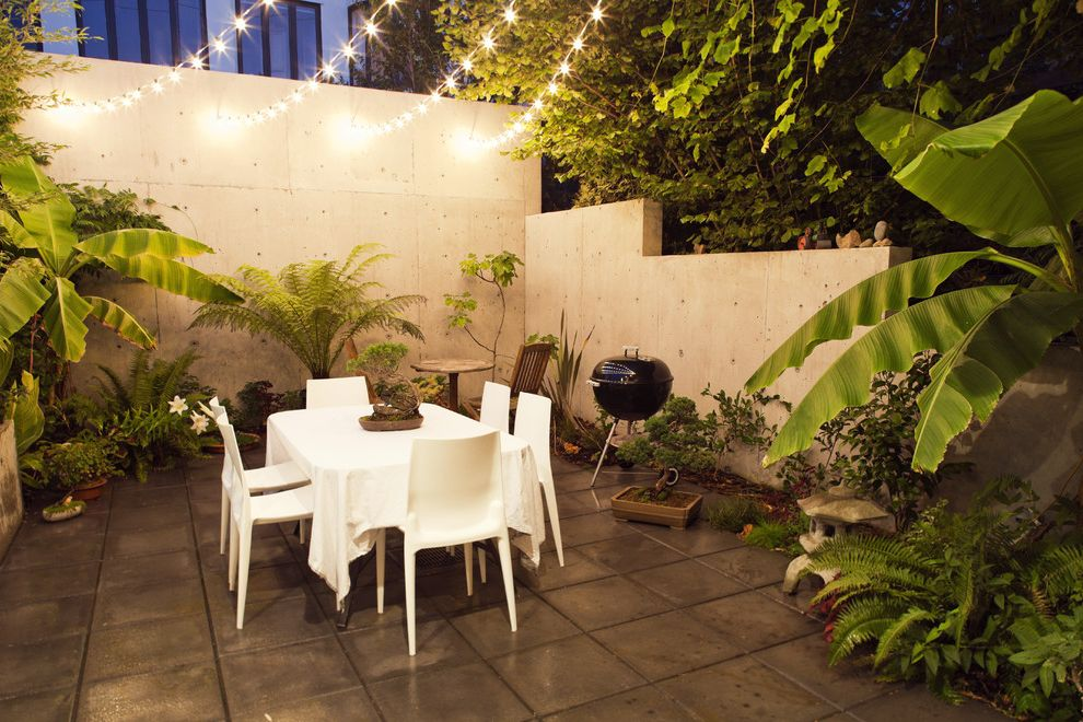 Outdoor Strand Lighting with Modern Patio Also Al Fresco Barbecue Bbq Concrete Paving Concrete Wall Courtyard Ferns Outdoor Outdoor Dining Outdoor Lighting Patio Dining Patio Furniture String Lights Tropical Plants