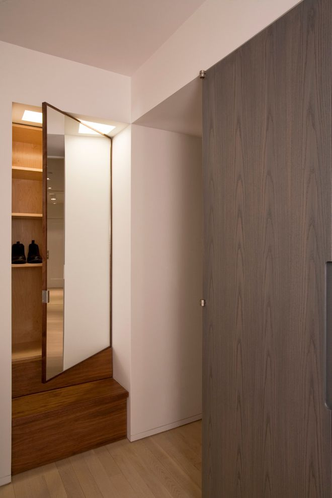 Over the Door Mirrored Jewelry Armoire with Contemporary Closet Also Cabinets Closet Gray Stained Wood Paneling Mirrored Door Modern Storage Step Storage Walnut Shoe Cabinet Wood Floor