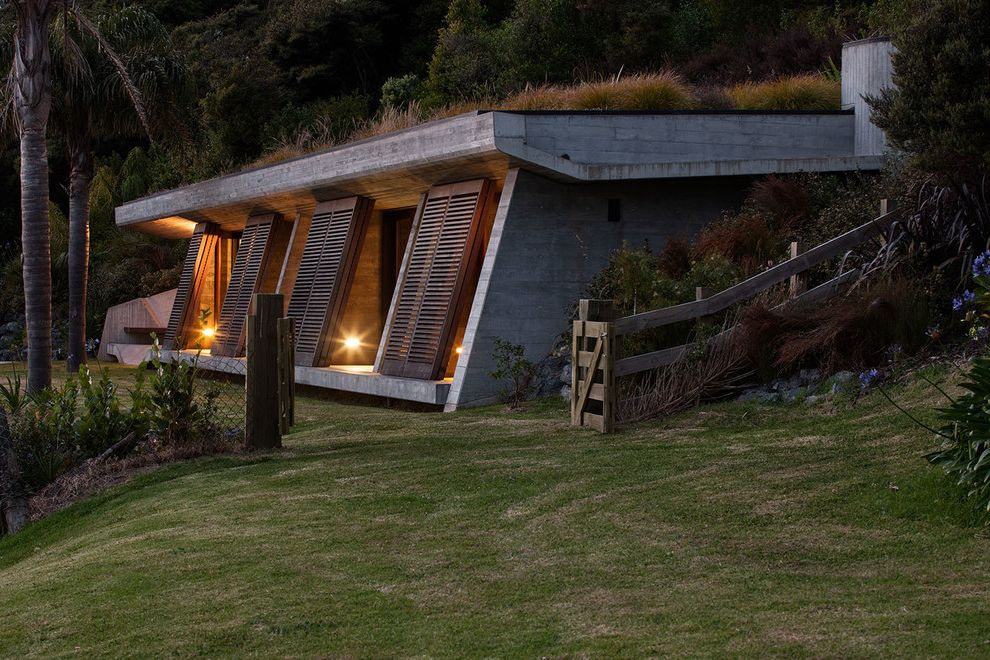 Pacific Sod   Contemporary Exterior  and Bunker Concrete Flat Roof Green Roof Timber Shutters