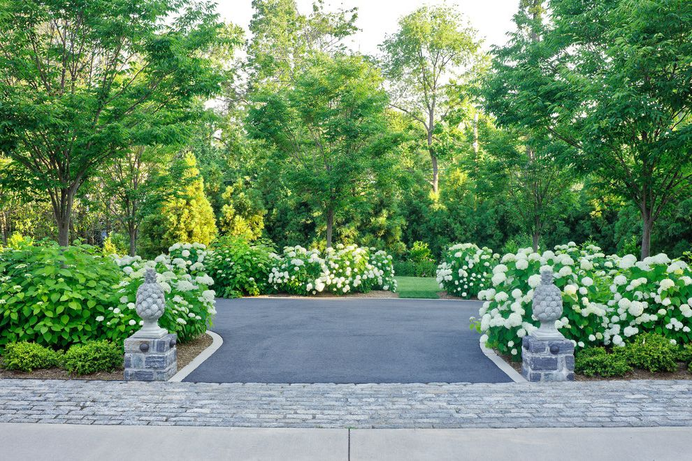 Paver Driveway Cost with Traditional Landscape  and Cobblestone Driveway Entry Court Pineapple Stone View Out of Entrance Courtyard Annabell Zelkova Tree
