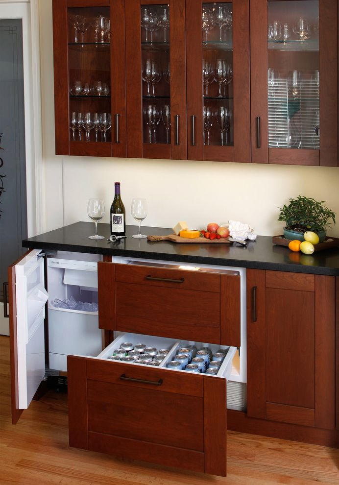 Pellet Ice Maker   Contemporary Kitchen  and Bar Area Ice Maker Paneled Appliances