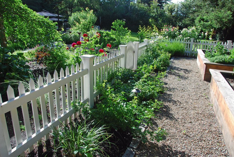 Pickett Fences   Traditional Landscape  and Box Fence Garden Gravel Kitchen Garden Path Picket Plants Vegetables Veggies White Painted Wood Wood