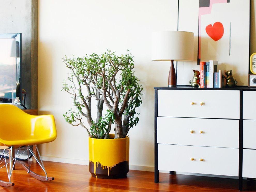 Plants for All Seasons with Eclectic Bedroom Also Bookends Chest of Drawers Container Plants Dresser Modern Icons Potted Plants Rocking Chair Wood Flooring