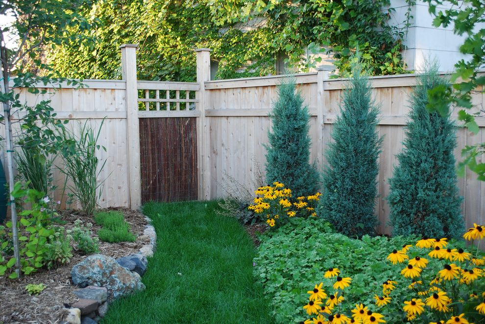Privacy Fence Trees   Contemporary Landscape Also Flower Bed Garden Fence Gate Grass Path Lattice Mass Plantings Mulch Path Rocks Walkway Wood Fencing